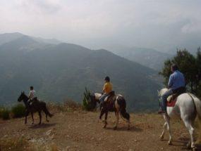 Albergue-la-torre-multiaventura-ruta-caballo3